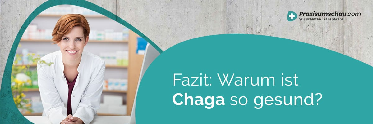 Fazit Chaga kaufen