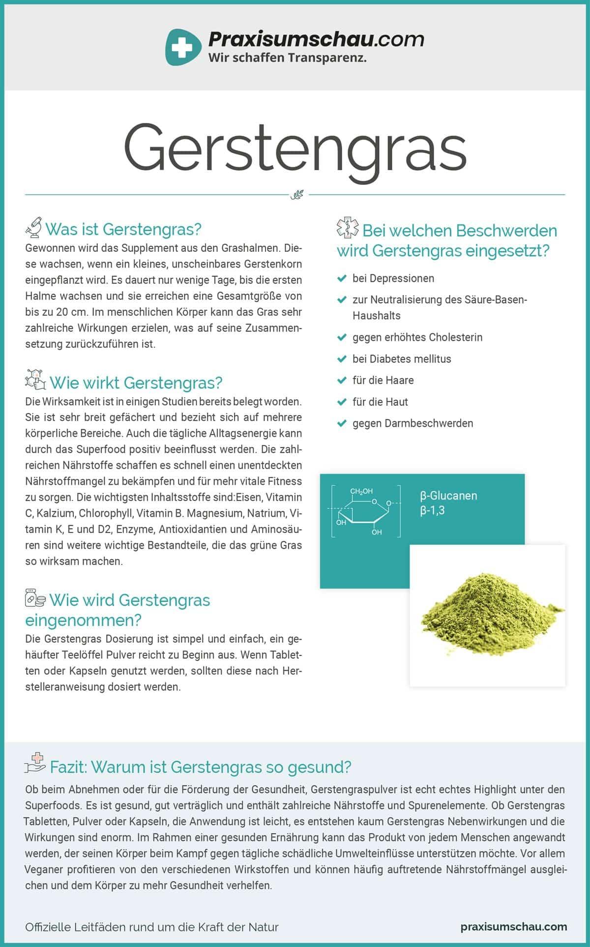Gerstengras infografik pu
