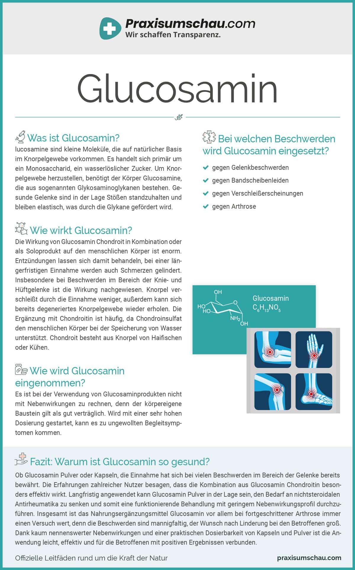 Glucosamin infografik pu
