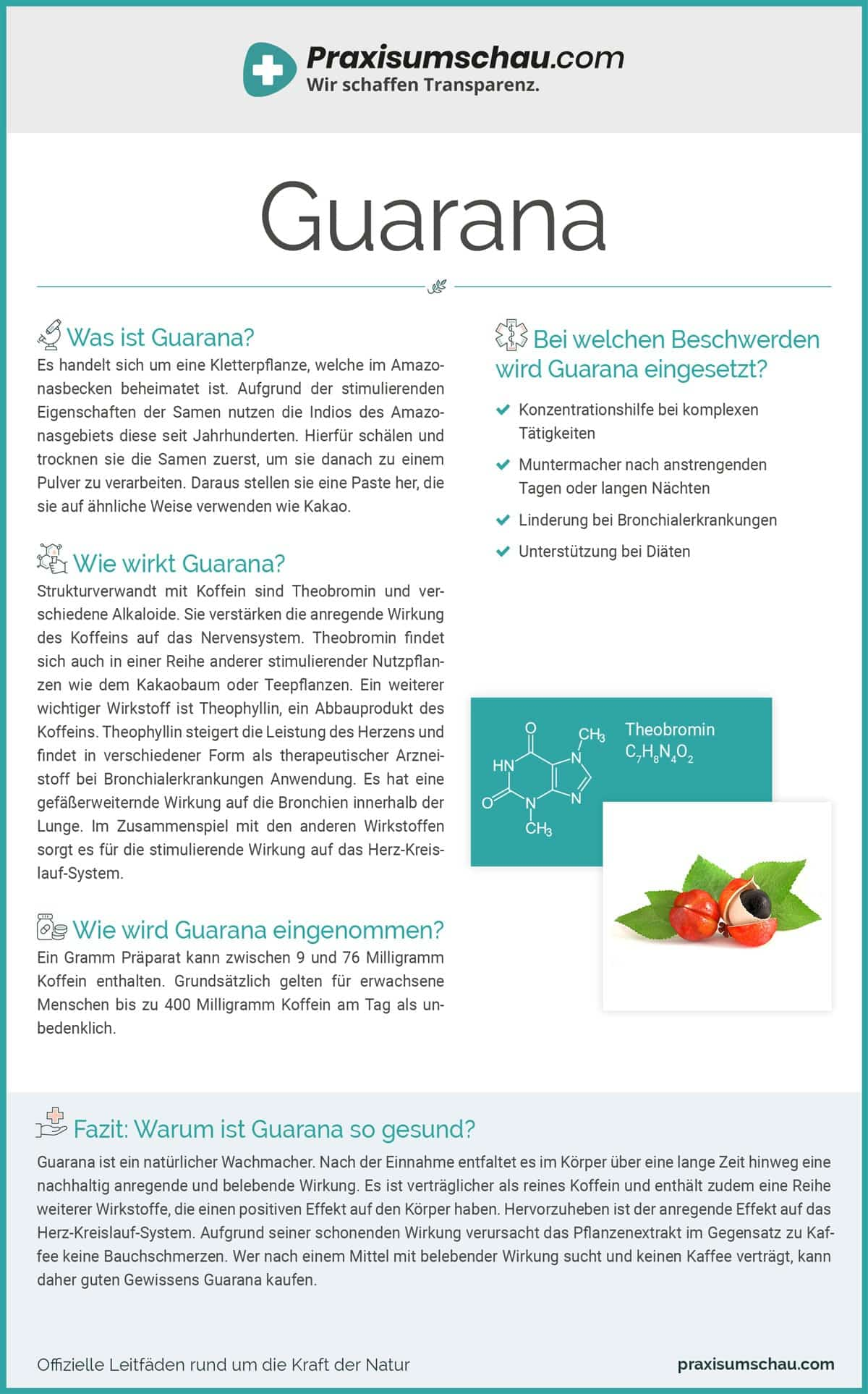 Guarana infografik pu