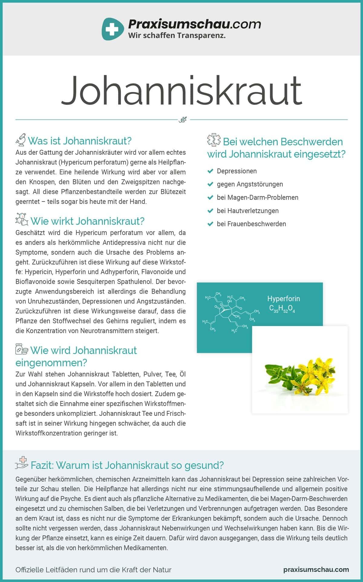 Johanniskraut infografik pu