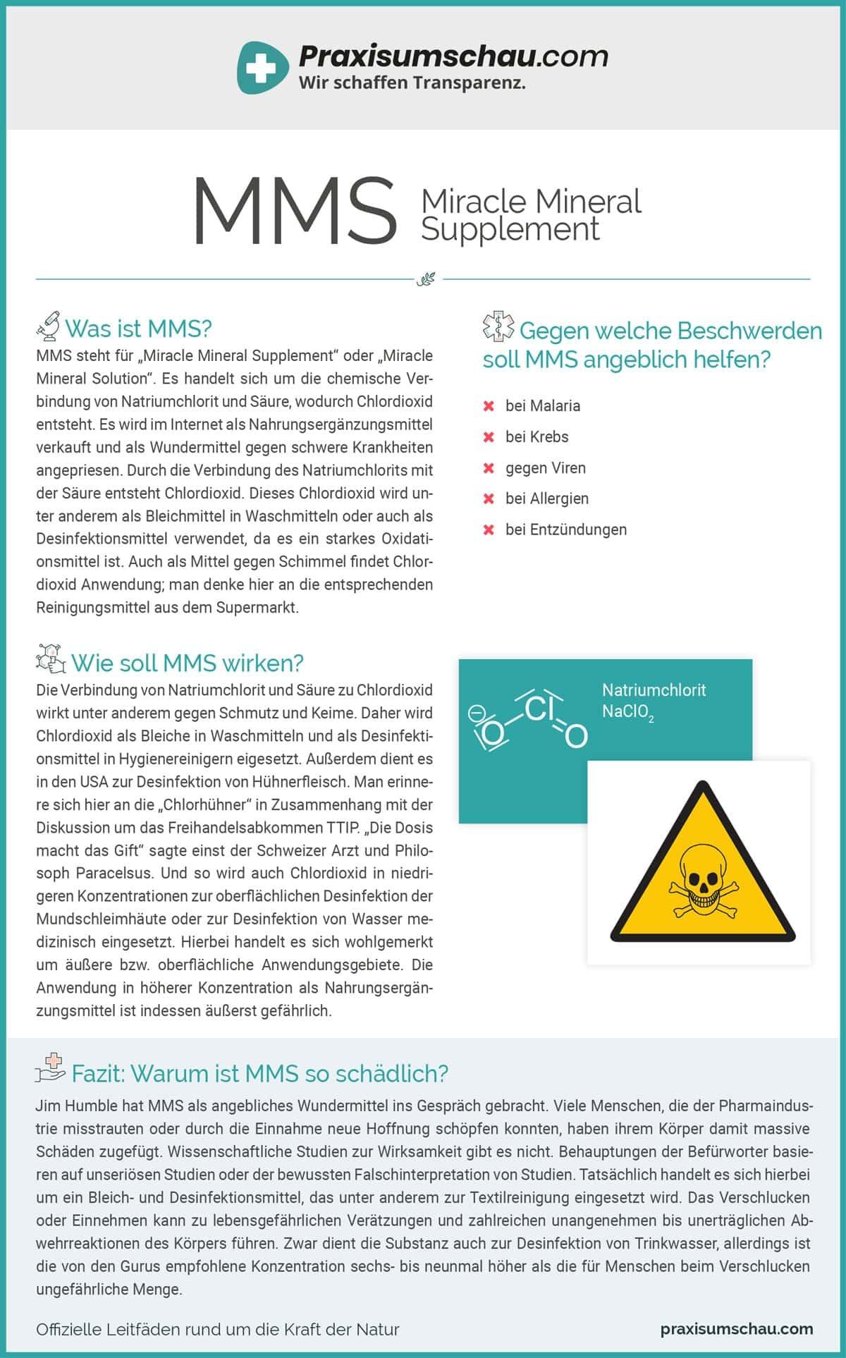 MMS infografik pu