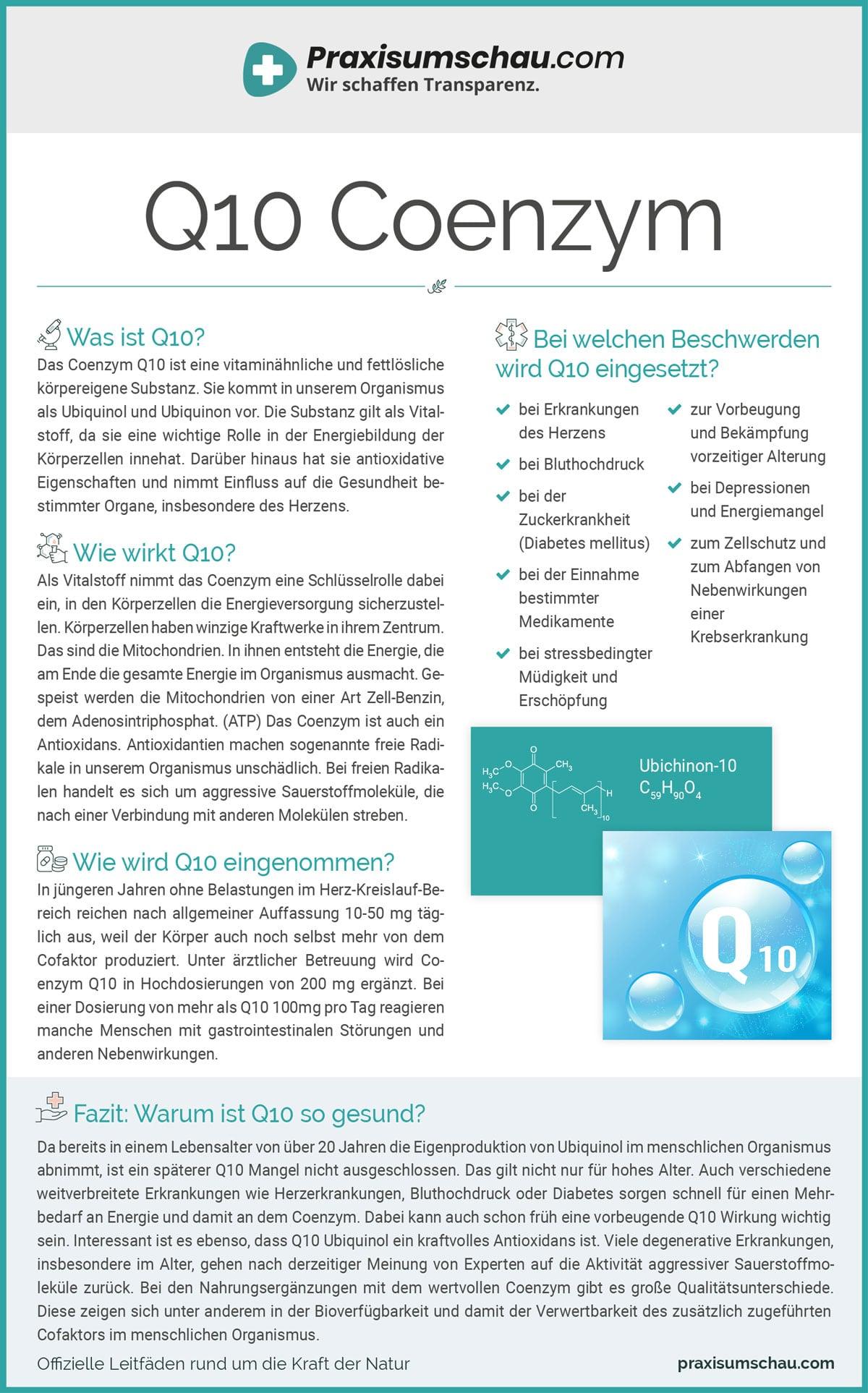 Q10 infografik pu