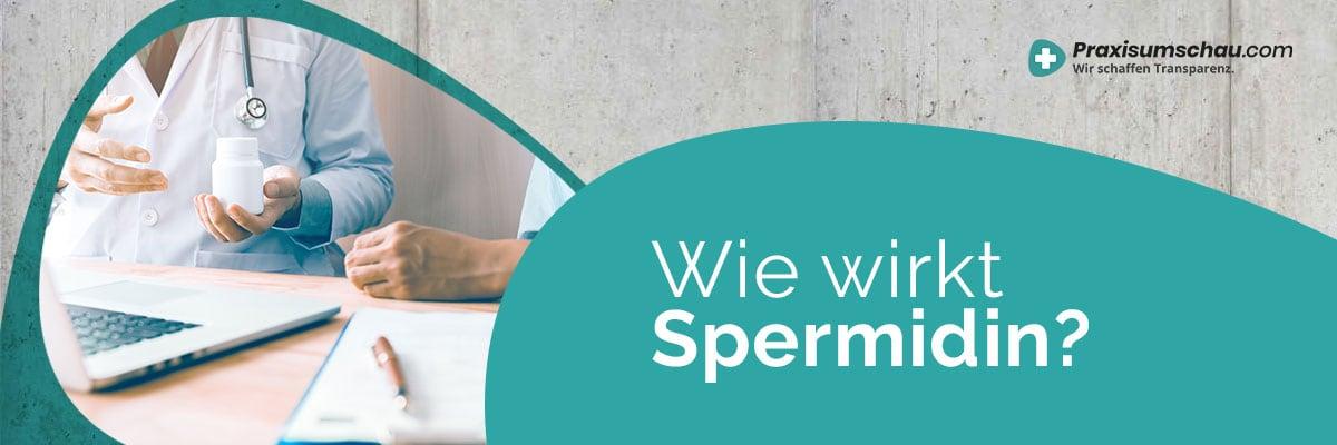 Wie wirkt Spermidin