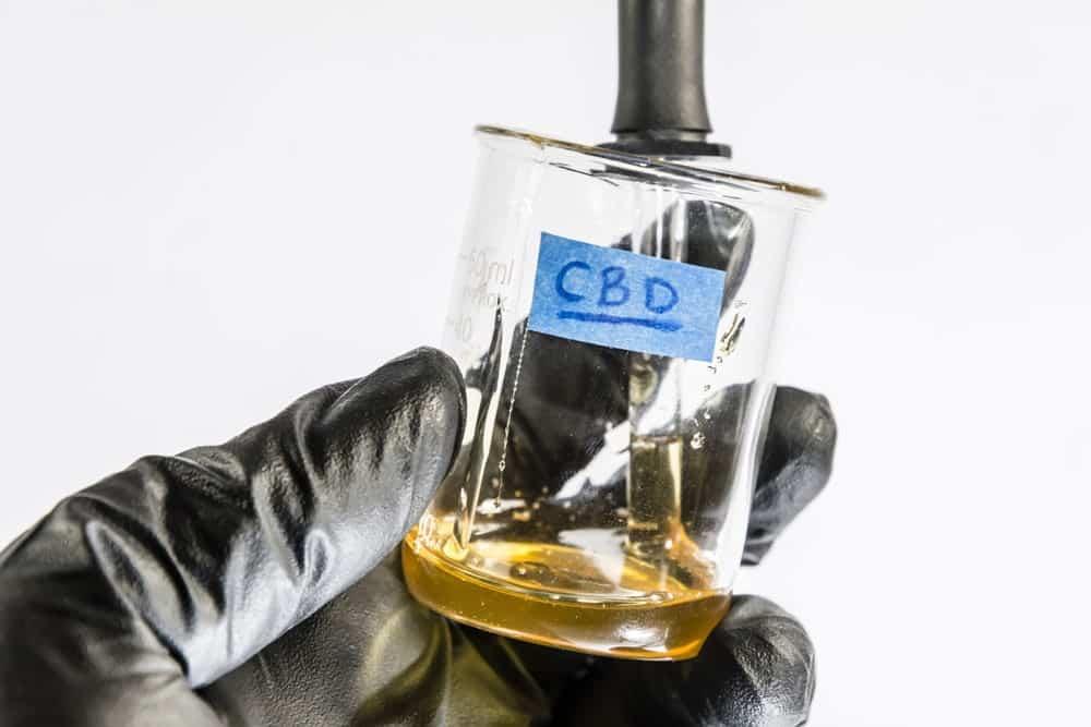 CBD Öl Gewinnung Ratgeber